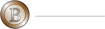 Bronze Construction Services Inc.